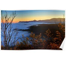 New life for a new day. Woods lookout Marysville  Poster