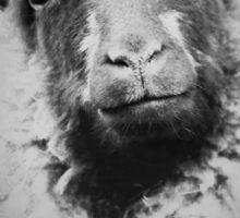 sheep person Sticker