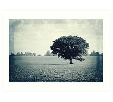 Solitary Tree Art Print