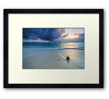 Lone Coconut Framed Print