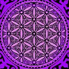 avrah flower of life iPhone case by peter barreda