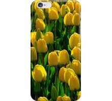 Spring symphony in yellow and green iPhone Case/Skin