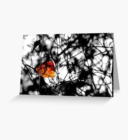 The Last of Autumn Greeting Card