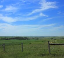 Alberta prairie and sky by Jim Sauchyn