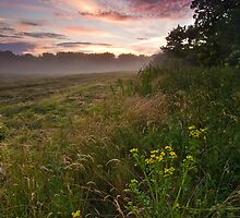 Misty Evening, Suffolk by Thomas Harvey