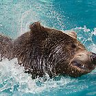 Bear&#x27;s splashing in the Water by Henry Jager