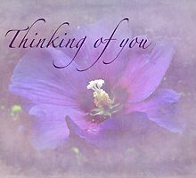 Thinking of You Greeting Card - Rose of Sharon by MotherNature