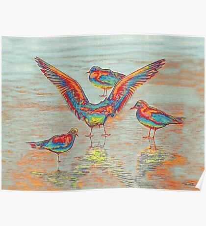 Ethnical birds III Poster