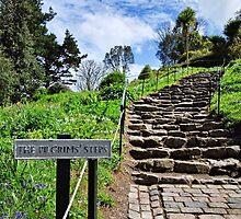 The Pilgrims' Steps ~ St Michael's Mount by Susie Peek