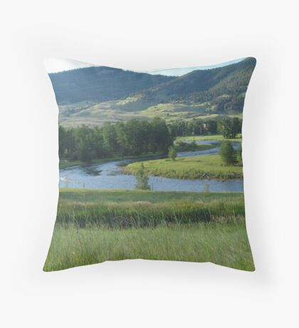 THE LAZY S  Throw Pillow