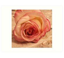 Digital WaterColored Rose  Art Print