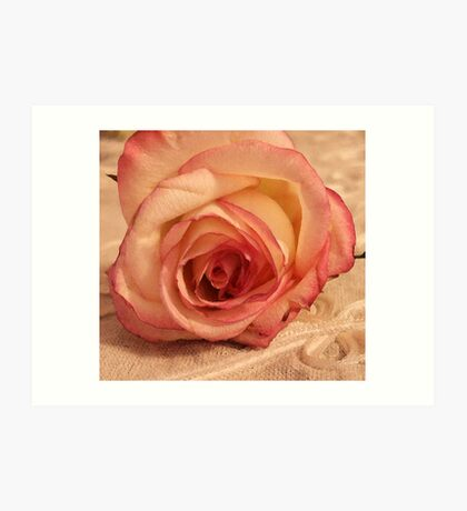 Digital WaterColored Rose  Art Print