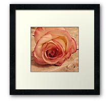 Digital WaterColored Rose  Framed Print