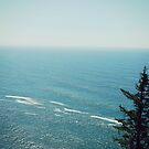 Oregon Coast by wowhannah