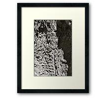 Texture Study #1 Framed Print