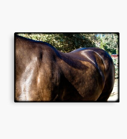 Strong and Gentle Beauty Canvas Print