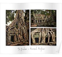 Ta Prohm #2 - Angkor - Cambodia Poster
