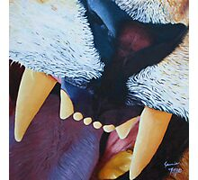Lion Teeth Acrylic Painting Photographic Print