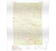 USGS Topo Map Washington State WA Raven Roost 243380 1989 24000 Poster