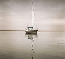Stillness by Kate Wall