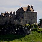 Duart Castle by Don Rankin