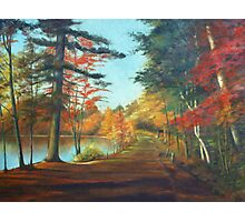 Forest Road Painting Photographic Print