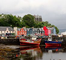 Tobermory Harbour by Don Rankin