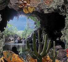 2315-Cactus Water Cave by George W Banks