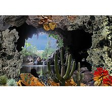 2315-Cactus Water Cave Photographic Print