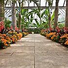 Chicago Botanical Gardens by Adam Bykowski