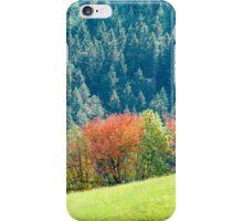 Strata iPhone Case/Skin