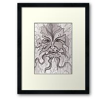 Nature's Face- Pen and Ink Framed Print