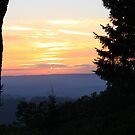 Sierra Mountain Sunset by Joy Fitzhorn