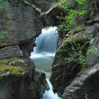 Cottonwood Cascades by Bill Hendricks