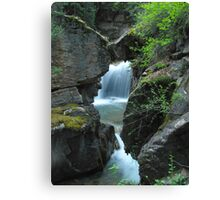 Cottonwood Cascades Canvas Print