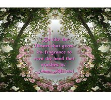 Be like the flower.... Photographic Print