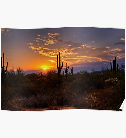 Sunset in  the Southwest  Poster
