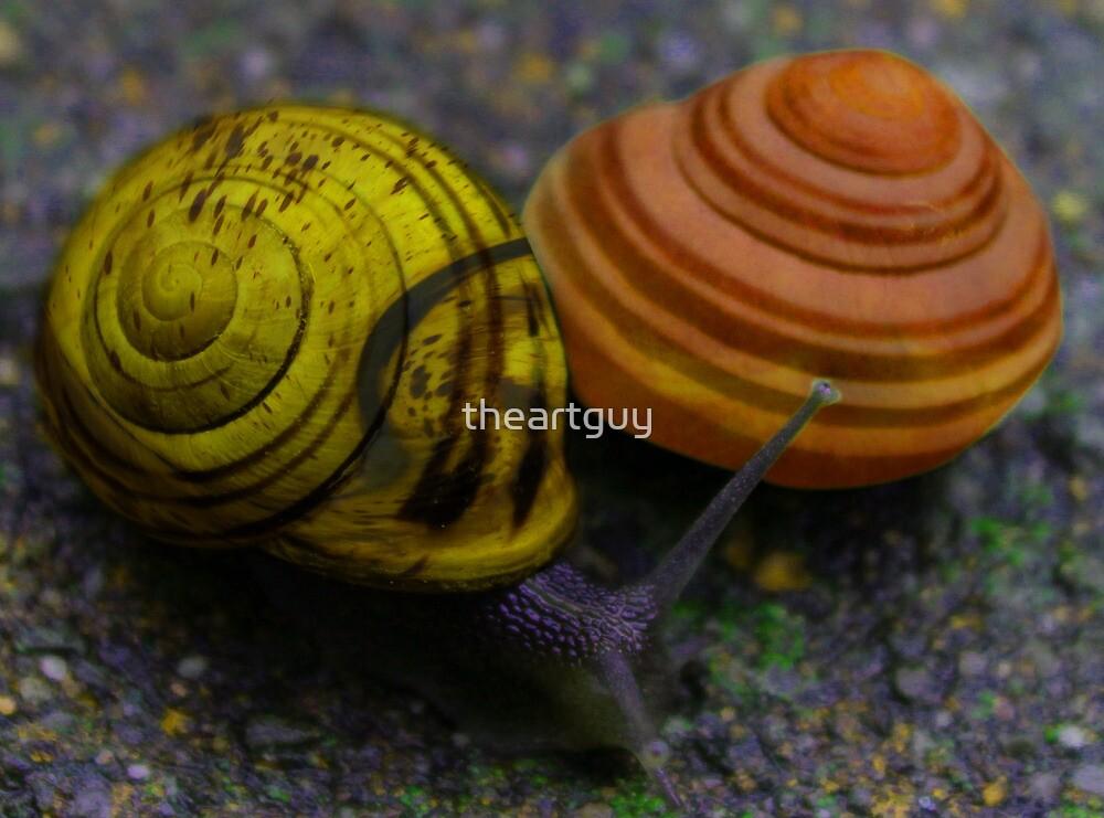 Bannana and Peach Snails by theartguy