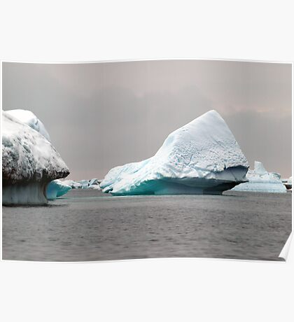 Icebergs Poster