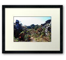 Breathtaking walks Framed Print