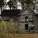 Abandoned Shelters of Dorchester County, Maryland_2 by Hope Ledebur