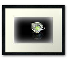 The Green Gooseberry on Black Framed Print
