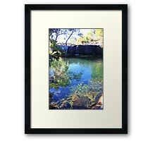 Mac Mac pools Framed Print