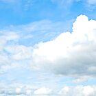 Sky v Trees by Paul  Reece