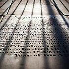 Shadows of the Fallen by Paul  Reece