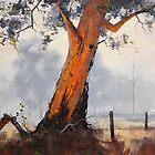 Australian Gum Tree by Graham Gercken