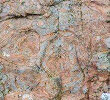 Orkney sandstone and lichen Sticker
