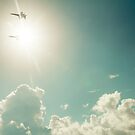 Blue Angels into the sun by cmpotts