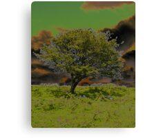 Moors-cover_Calander Canvas Print