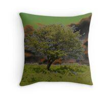 Moors-cover_Calander Throw Pillow